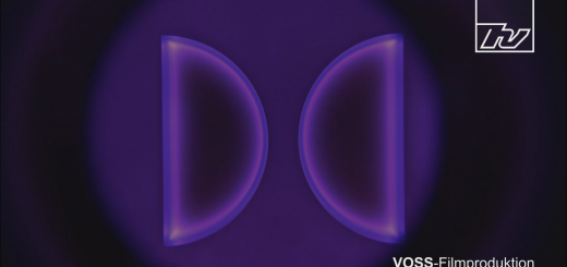 VOSS-Poster